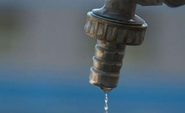 Придворци без воде