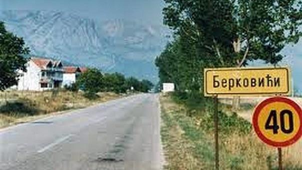 berkovici