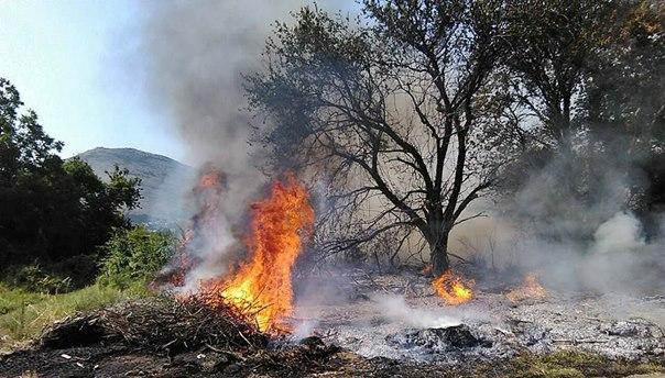 Пожар у околини села Кочела: Ватра се креће према Требињским брдима
