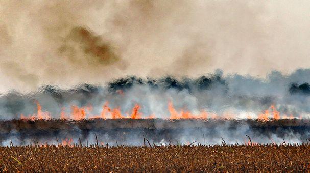 vatra-njiva-njive-strnjiste-paljenje-oranice-pozar-poljoprivreda-tanjug-jaroslav-pap_660x330