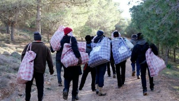 На подручју Гацка спријечено кријумчарење четворо Сиријаца