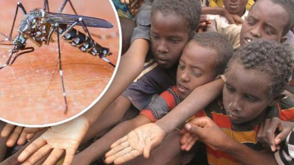 viris djeca komarac afrika