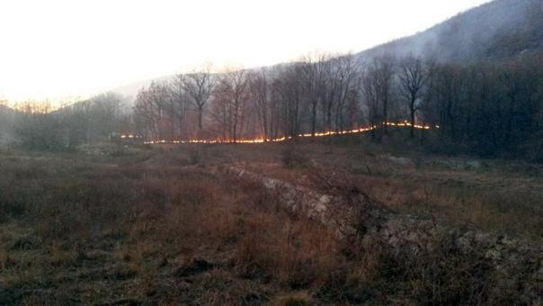 Активан пожар на Турментима