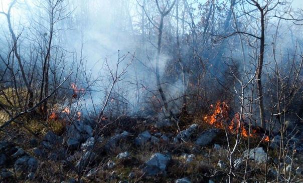 Гори на минираном терену: Пожар из Хрватске прешао на територију Требиња