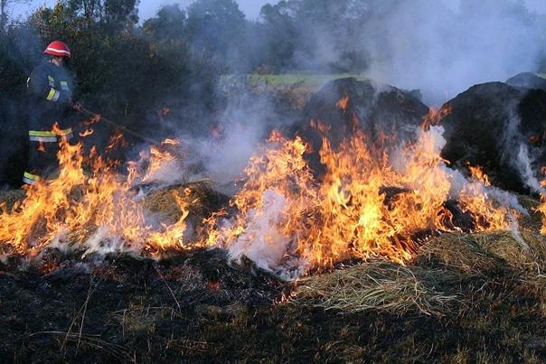 Пожари под контролом у Црној Гори