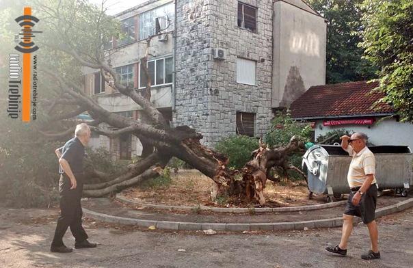 ФОТО: Вјетар срушио стару кошћелу