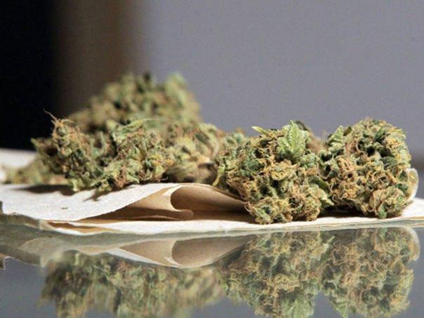 """Акција """"Канадер"""": Ухапшено 11 лица , откривено 19,8 килограма марихуане"""