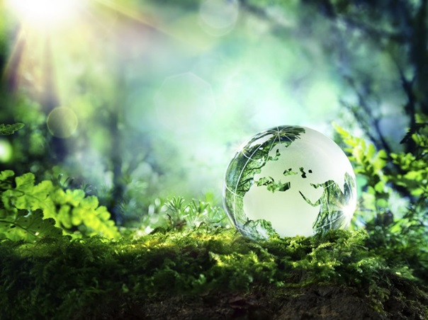 Poziv građanima: Obilježavanje Dana planete zemlje