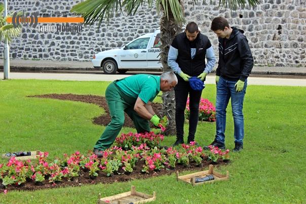 Почела прољећна садња цвијећа у Требињу