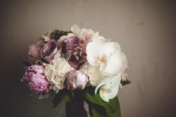 Šaptač cvijeću: Hercegovac zadivljujućeg dara