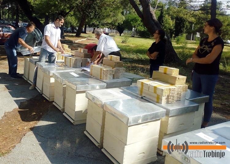 Помоћ требињским пчеларима: КОШНИЦЕ ЗА ПОЧЕТНИКЕ