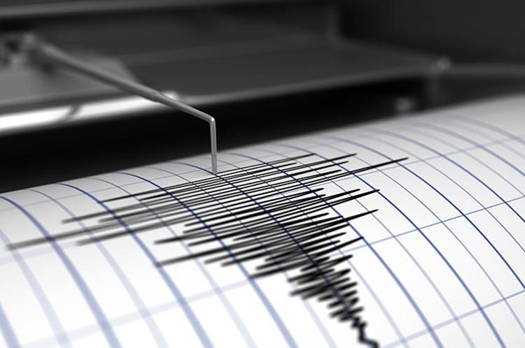 zemljotres1.jpg (93 KB)