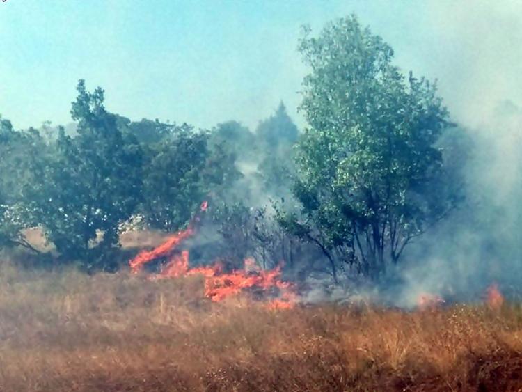 Билећа: Пожар у Коритима, куће одбрањене
