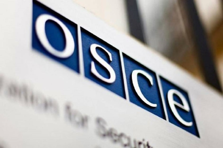 osce-696x377.jpg (81 KB)